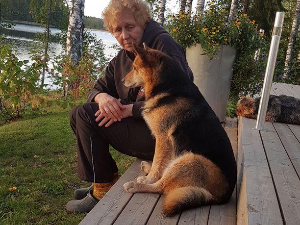 Kasperi-koira ja sen emäntä Annikki Päiviö istuivat viime kesänä mökin portailla ja nauttivat Avusjärven maisemista Liesossa. Kasperin katoaminen on suuri suru perheelle.