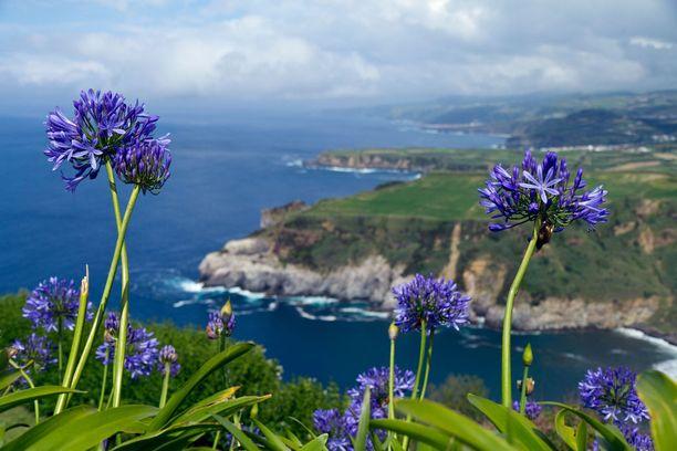 Portugalille kuuluva Azorien saariryhmä hurmaa vehreällä luonnollaan.