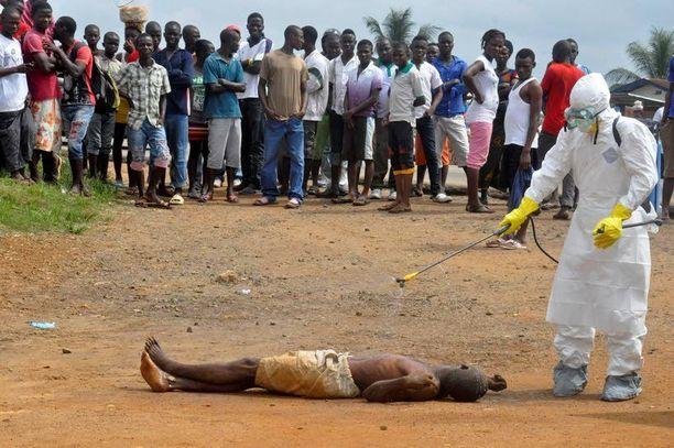 Terveystyöntekijä ruiskutti Liberian pääkaupungissa Monroviassa desinfioivia kemikaaleja vainajaan, jonka epäillään kuolleen Ebolaan.