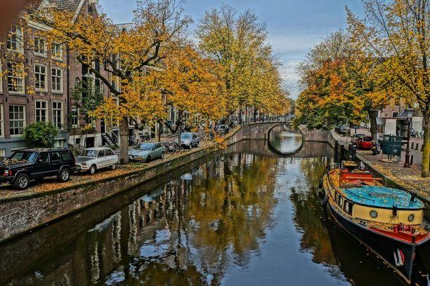Jokohan syyskuussa on näin keltaisia lehtiä Amsterdamissa?