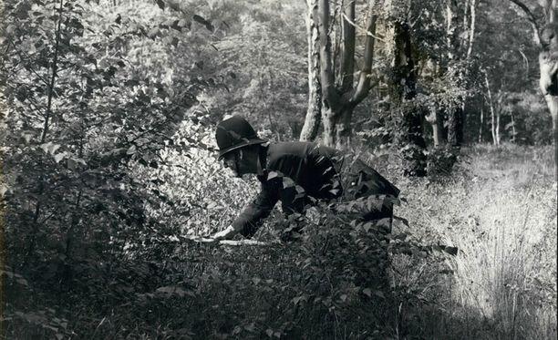 Robertsia etsittiin metsistä 350 poliisin 30 poliisikoiran voimin.