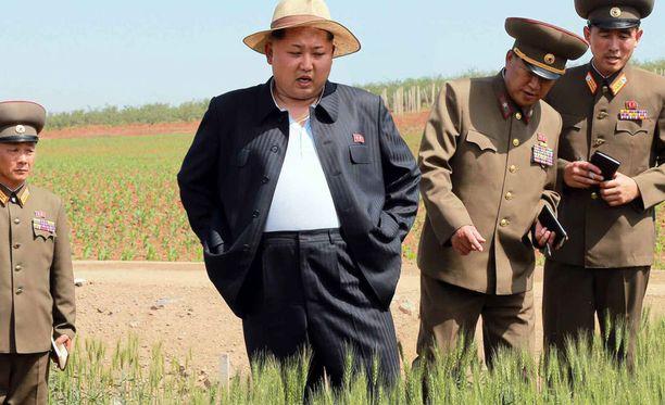 Vaikka Pohjois-Koreassa kärsitään nälänhädästä, on kuvan perusteella maan johtajalle Kim Jong-unille riittänyt ruokaa yli oman tarpeen.