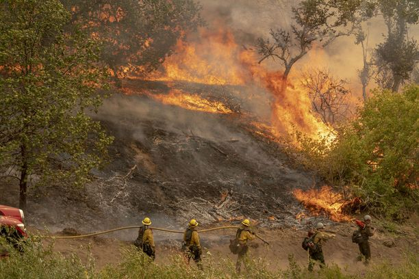 Palomiehet ovat täystyöllistettyjä Yhdysvaltojen länsirannikolla.