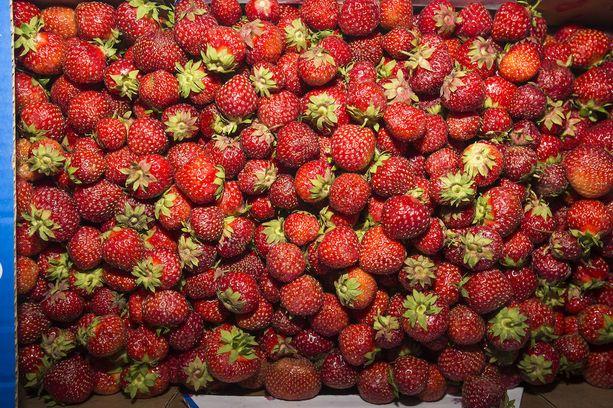 Suurin osa avomaan mansikoista on vielä kukintavaiheessa.