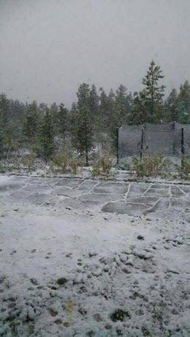 Talvi saapui Enontekiöllä kesän keskelle. Kuva on otettu hieman ennen kello kahdeksaa aamulla.