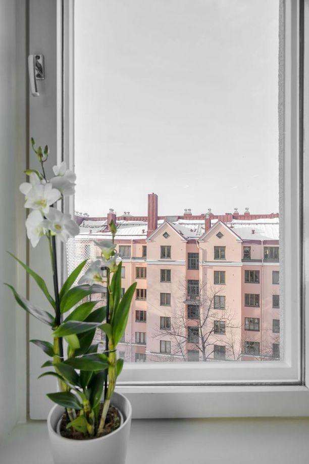 Tämä kaksio sijaitsee Töölössä hissillisen talon ylimmässä kerroksessa.