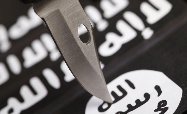 Yhdysvallat metsästää Isisiä myös verkossa. Kuvituskuva.