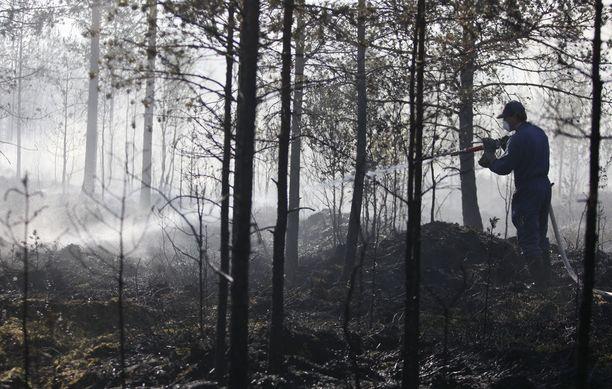 Metsäpalovaara kasvaa kuivuuden jatkuessa. Arkistokuva.