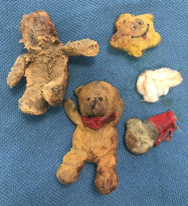 Omistaja kertoo, että Maisy oli varastanut sen mahasta löytyneet nallet perheen muilta koirilta.