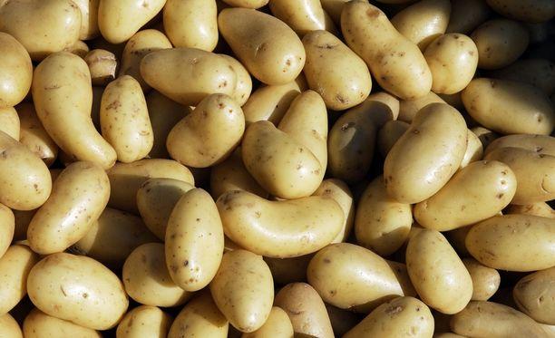 Mutanttiperunaa ei ole tunnistaa tavalliseksi perunaksi.