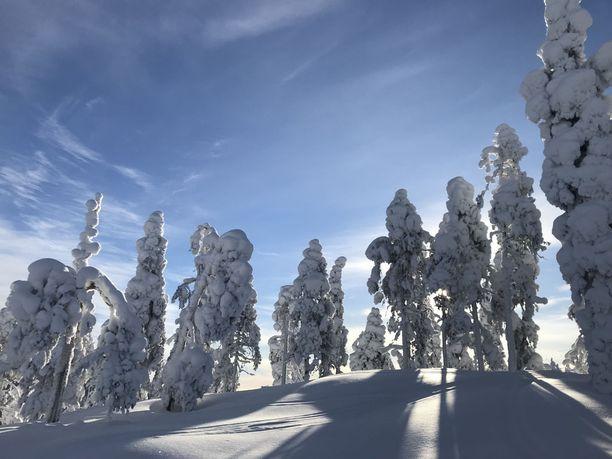 Luontomatkailu on kovassa kasvussa sekä Lapissa että Kuusamossa.