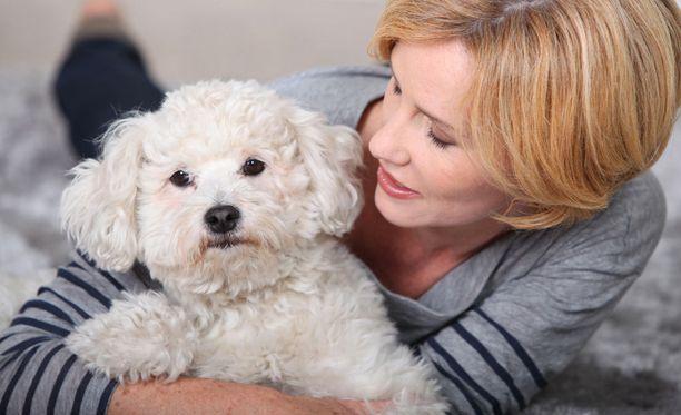 Omistajat olivat kiintyneimpiä sellaiseen koiraan, joka on paitsi söpö myös älykäs ja nopea oppimaan.