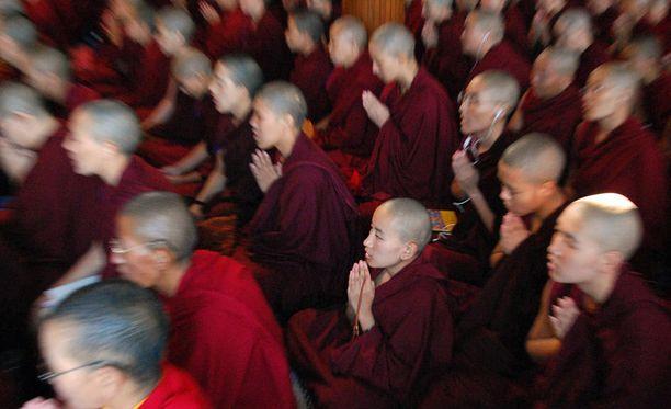 McLeod Ganj Dharamsalassa on maanpaossa elävän Dalai-laman koti. Seudulla asuu runsaasti Tiibetistä paenneita buddhalaisia. Kuva viime viikon maanantailta.