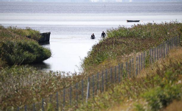 23.elokuuta Wallin ruumista etsittiin rantavesistä. Vapaaehtoiset auttoivat poliisia Tanskan rannikolla.