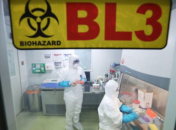 """Maailma mullistui vuodenvaihteessa. """"Kiinan mysteerivirusta"""" tutkittiin laboratoriossa Etelä-Koreassa tammikuun alussa."""