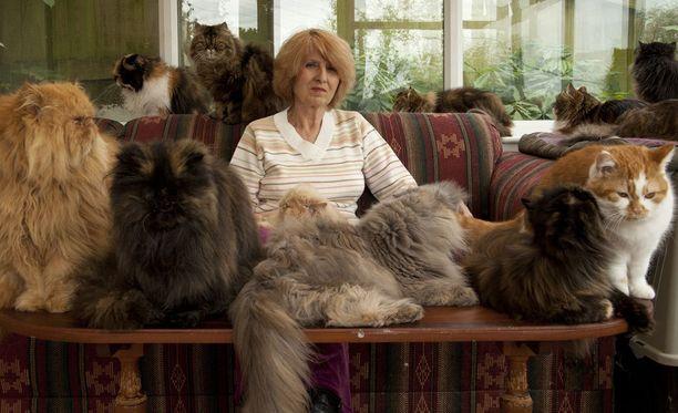 Marlene käyttää kissojaan näyttelyissä ja kylvettää niitä iltaisin.