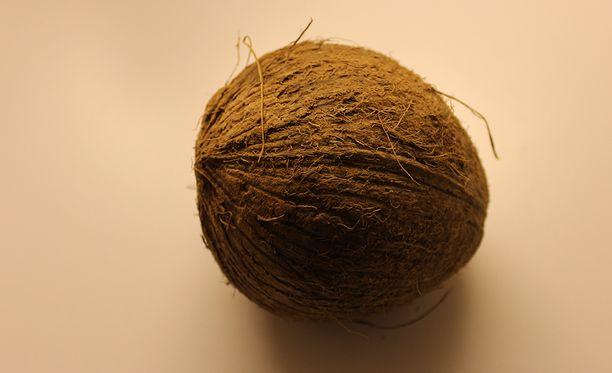 Pähkinän sisällä oleva kookosmaito kiehui ja pähkinä räjähti voimalla, kun arkkua krematoitiin.