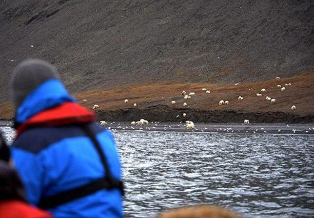 Turistiryhmä pääsi näkemään ja kuvaamaan harvinaisen luontoilmiön.