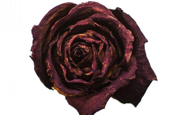 Ruusu-nimi viittaa sairauden aiheuttamaan punoitukseen.