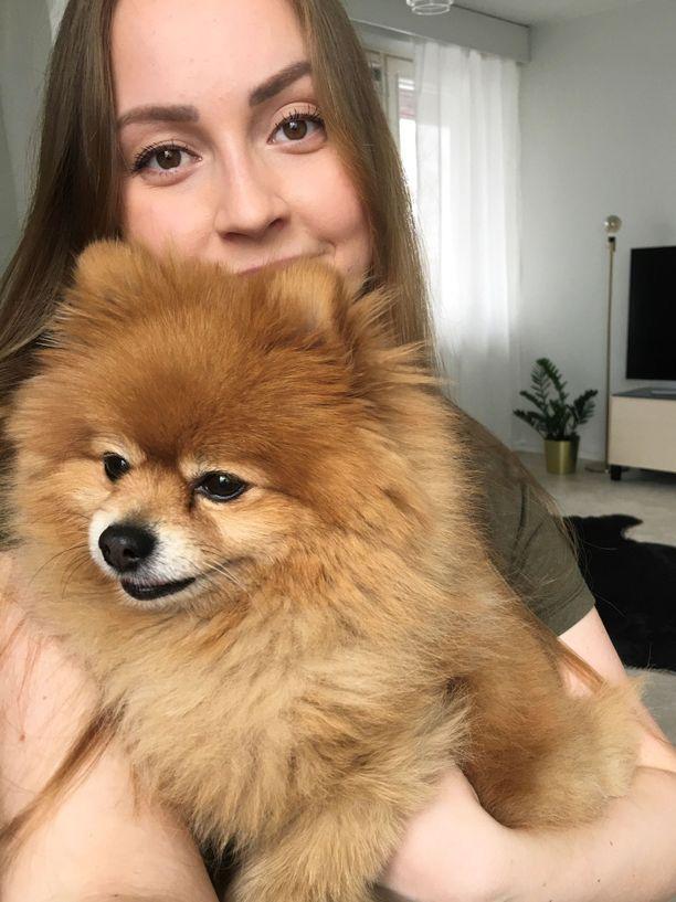 Pomeranian Nuga, 5, oli Sofia Partasen silmäterä.