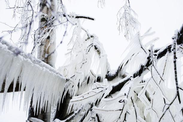 Aapeli-myrsky jäädytti veden ja sytytti tulen. Kuva Tampereelta.