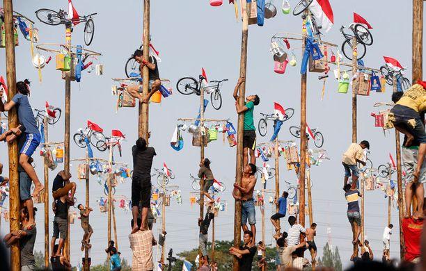 """Indonesian itsenäisyyspäivän perinteisiin kuuluu """"panjat pinang"""" -peli, jossa kilpailijat kiipeävät rasvattua palmunrunkoa pitkin kohti latvaan ripustettuja palkintoja."""