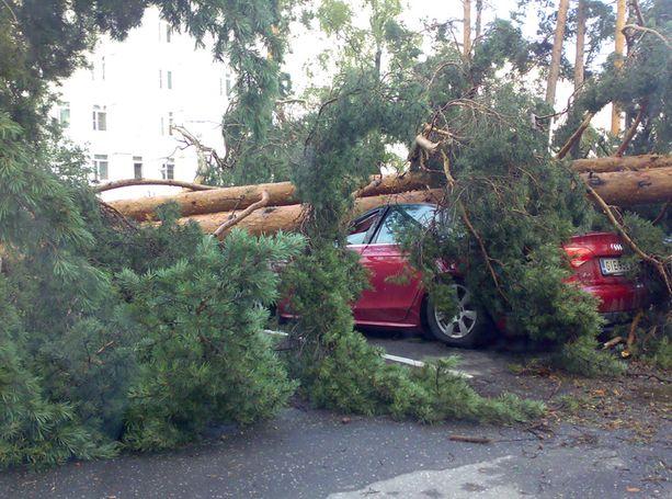 Ukkostuhoja myrskyn kurittamasta Savonlinnasta.