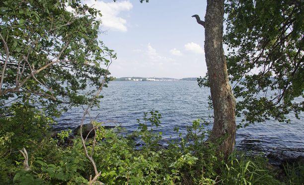 Metsä ja järvi antavat suomalaiselle suuria aistielämyksiä.