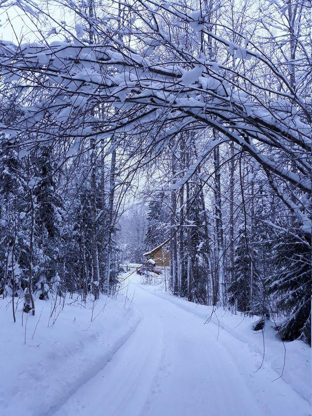 Mäen alla satumaisen talvimaiseman keskellä on Juhani Yliruusin koti.