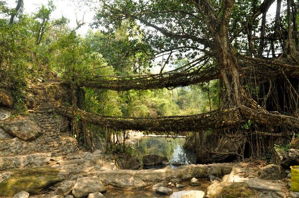 Cherrapunjista löytyy tällainen kaksikerroksinen siltaversio.