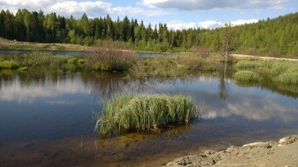 Pohjois-Savon ely-keskus vaati patopengertä mahdolliselle kaivosalueelle, koska riskinä oli koealueen romahtaminen Lahtojokeen.