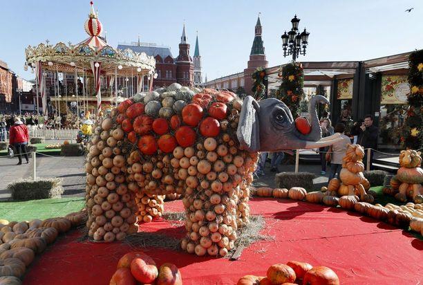 Moskovassa järjestetyillä syysjuhlilla saatiin ihmetellä kurpitsoista tehtyä norsua.