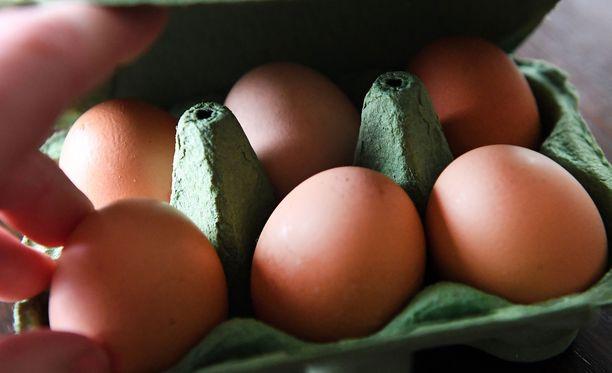 Kananmunia supermarketissa Britanniassa. Munakriisi on levinnyt useisiin Euroopan maihin.