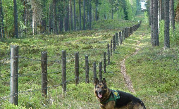 Saksanpaimenkoira Luke vartioi itärajalla. Kuva vuodelta 2005.