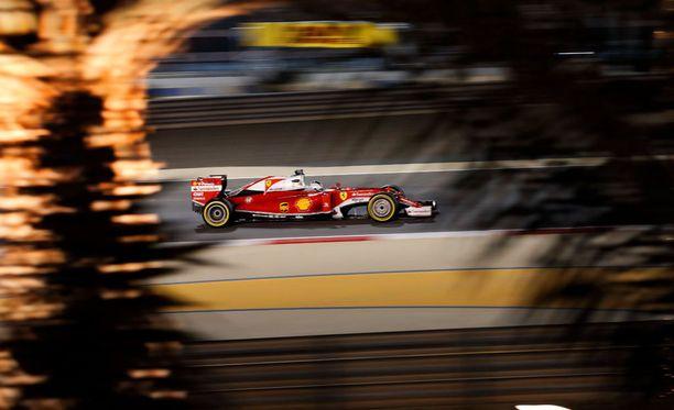 Sebastian Vettel kurvaili Bahrainin illassa.