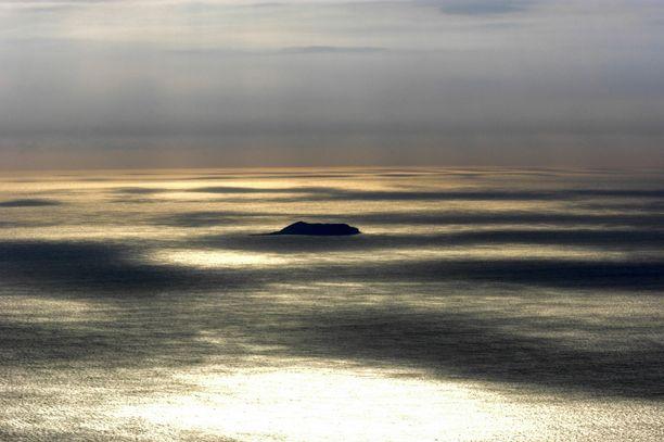 Surtseyn saari tarjoaa tutkijoille ainutlaatuisen paikan seurata sen kasvillisuuden ja eläimistön kehitystä.
