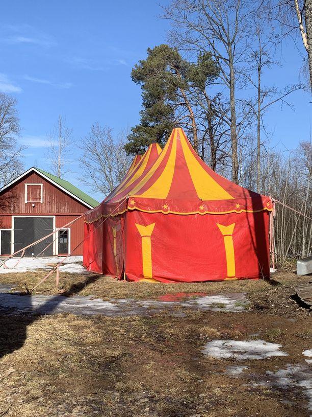 Kyllähän sirkushostellissa on telttakin oltava. Kesäksi pystytetään suuri juhlateltta, jossa voi pitää tilaisuuksia jopa 200 hengelle.