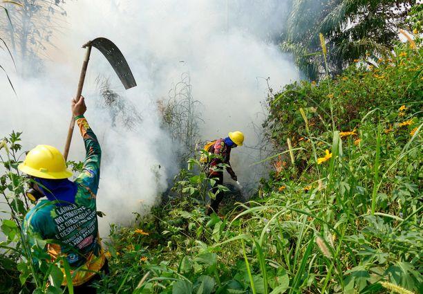 Lasku Amazonin tuhosta jää tulevien sukupolvien maksettavaksi.