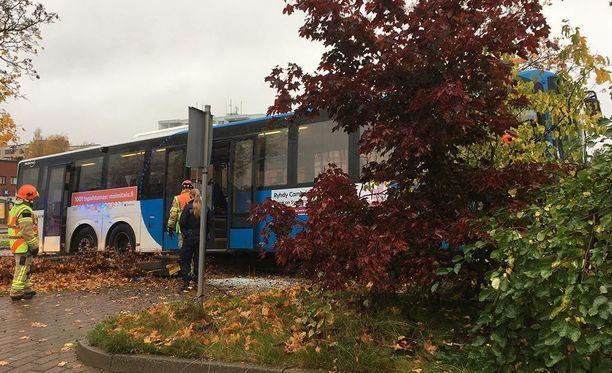 Linja-auto pysähtyi vasta puihin.