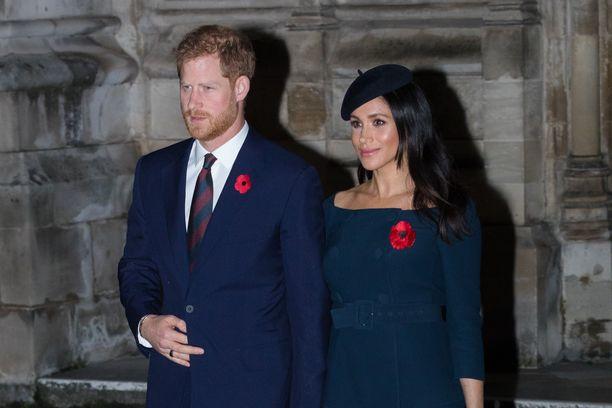 Onko hovin uusi jäsen, herttuatar Meghan, sotkenut prinssiveljesten välit?