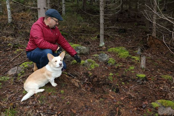 Polttokenttäkalmisto on harvinainen löytö, vaikkakin Jämsässä niitä on löydetty useampiakin. Keski-Suomen museon arkeologi Miikka Kumpulainen on innoissaan löydöstä. Kuutti-koira kulkee usein isäntänsä mukana töissä.