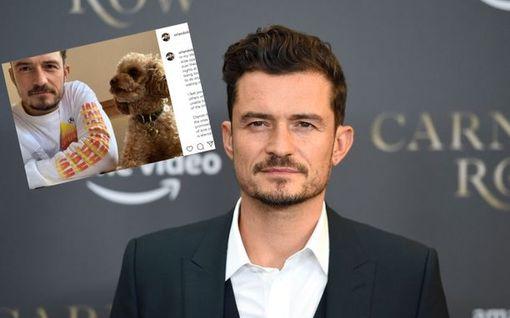 """Orlando Bloomin kadonnut koira löytyi kuolleena – sureva näyttelijä otti muistotatuoinnin: """"En jättänyt kiveäkään kääntämättä"""""""