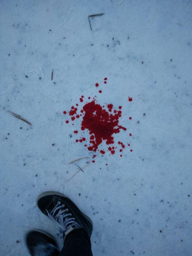 Koirien tappelusta jäi lumiseen maahan verinen jälki.
