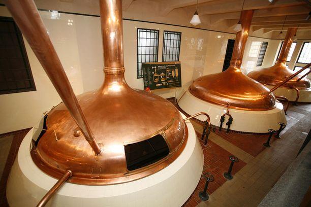 Pilsner Urquellin panimokierroksella oppii paljon oluen teosta.