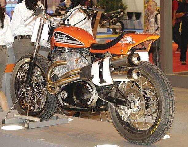 SPORTTI. Urheilullisten pyörien maailmaan mahtuu aina yksi Harley Davidson.