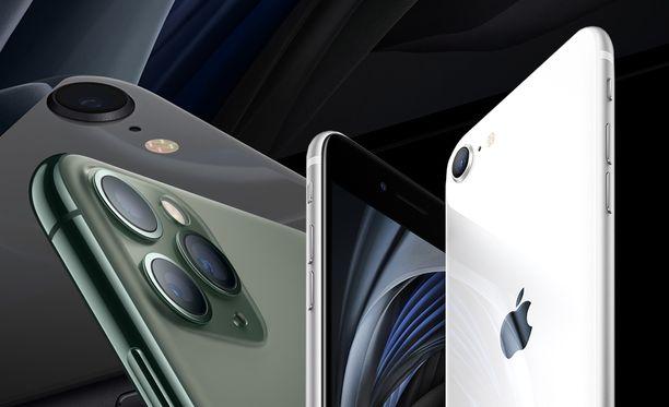 iPhone SE on hintansa puolesta mielenkiintoinen uutuus.