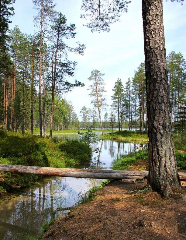 Hossan kansallispuistossa voi kokeilla erilaisia aktiviteetteja. Muun muassa retkeily on täällä suosittua.