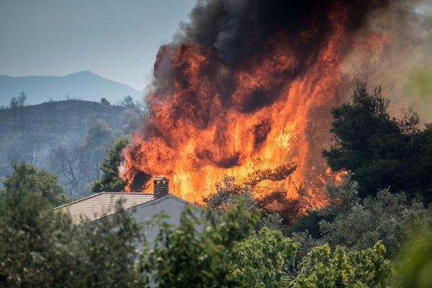Palomiehet työskentelivät läpi yön pelastaakseen neljä kylää Evian saarella Kreikassa. Kuva Makrimallin kylästä.