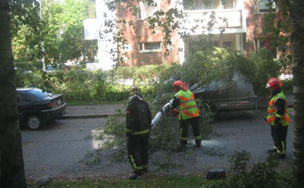 Helsingin Veräjämäessä Larin Kyöstin tiellä kova tuuli kaatoi puunlatvan peräkärryn päälle tukkien samalla tien. Paikalle tuli pian pelastushenkilökunta raivaushommiin.