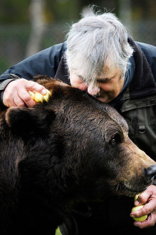 Vyöti-karhu on elellyt Sulon kanssa vuosia.